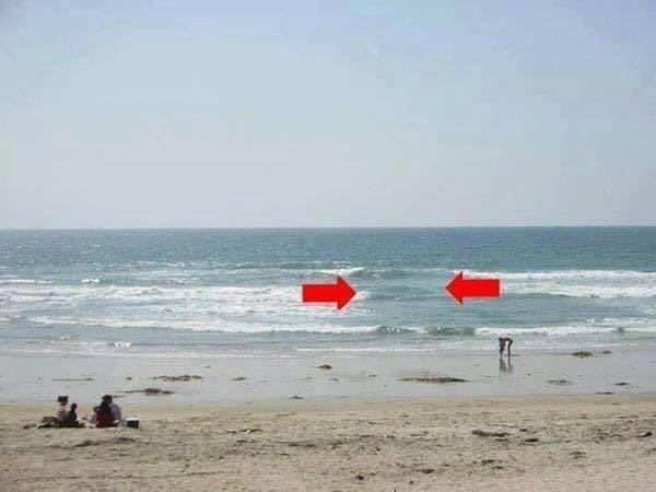 Denize Girdiğinizde Bu Görüntüye Dikkat! galerisi resim 1