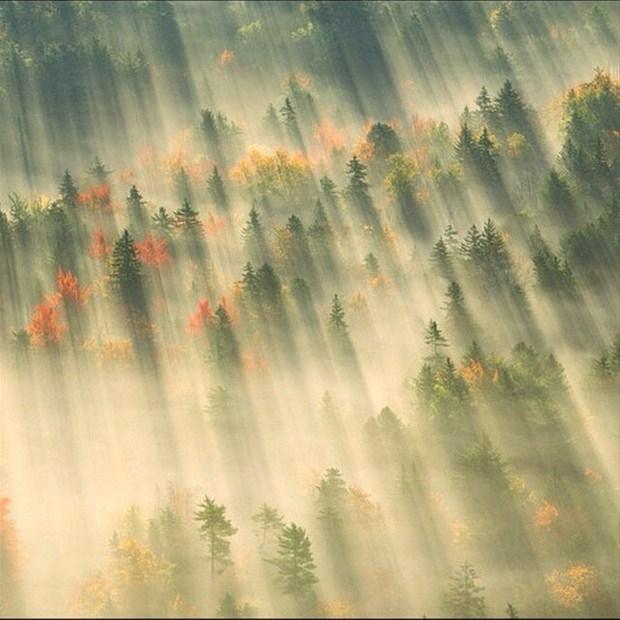 National Geographic'in En İyi Fotoğrafları! galerisi resim 1