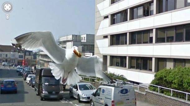 Google'ın Street View Kamerasına Takılan Kareler galerisi resim 1