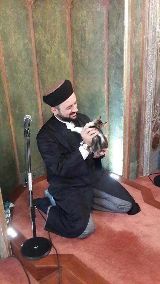Camiyi Kedilere Açan İmam Fenomen Oldu galerisi resim 1