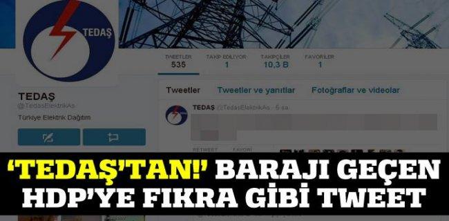 'TEDAŞ'tan!' Barajı Geçen HDP'ye Fıkra Gibi Tweet!