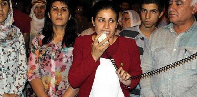 HDP'li Vekilden Skandal Açıklama