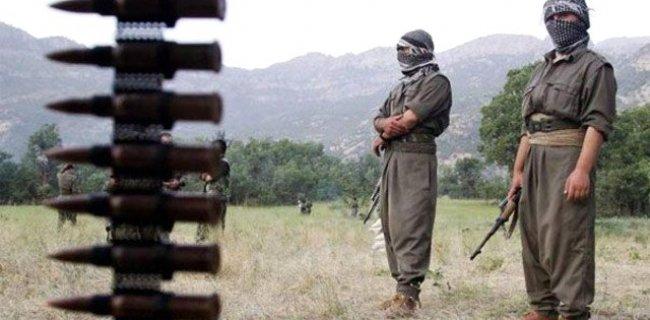 PKK'ya Jeneratör ve Mazot Götüren 3 Kişi Tutuklandı