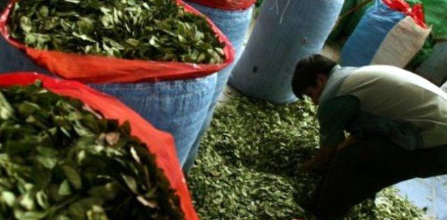 Yıllardır 'Kokainli Çay' Satıldığı Tespit Edildi