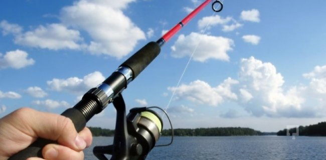 Balon Balıklarına Adet Başına 2 TL Destekleme Ödemesi Yapılacak