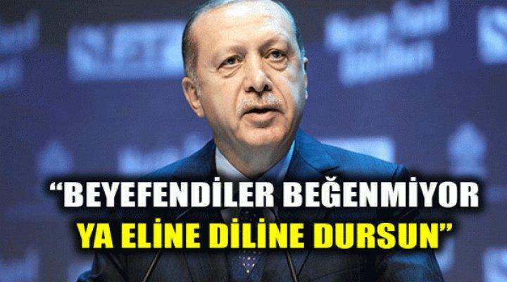Erdoğan'dan Asgari Ücret Açıklaması: Eline Diline Dursun