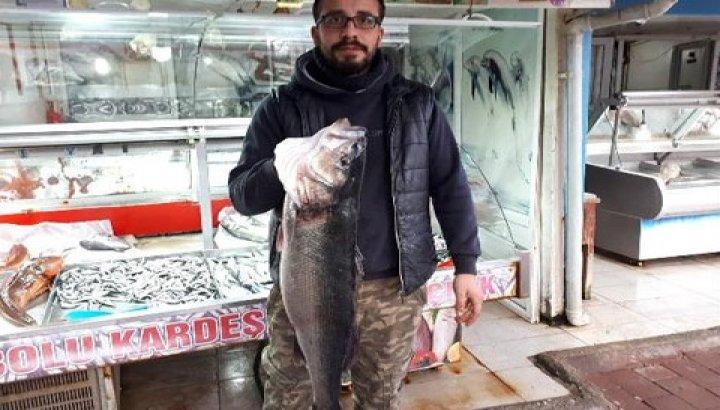 Amatör balıkçı, oltayla 8 kiloluk levrek yakaladı
