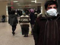 Türkiye'de Domuz Gribinden 8 Kişi Hayatını Kaybetti