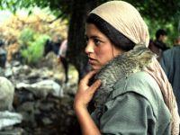 Şeytanın Aklına Gelmez! İşte PKK'nın Son Kurnazlığı