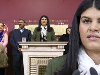 TBMM'den Seslendi: Abdullah Öcalan'a Özgürlük