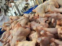 Piliç Eti Üreten 19 Şirket Hakkında Soruşturma!