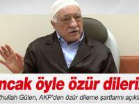 """Gülen: """"Ancak Öyle Özür Dileriz"""""""