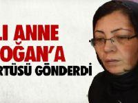 Acılı Anne Erdoğan'a Başörtüsü Gönderdi