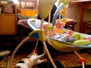 Bebeğin Beşiğini Sallayan Sevimli Kedi